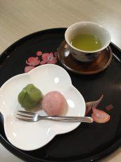 桜、壁飾り作成(平成31年3月4日)