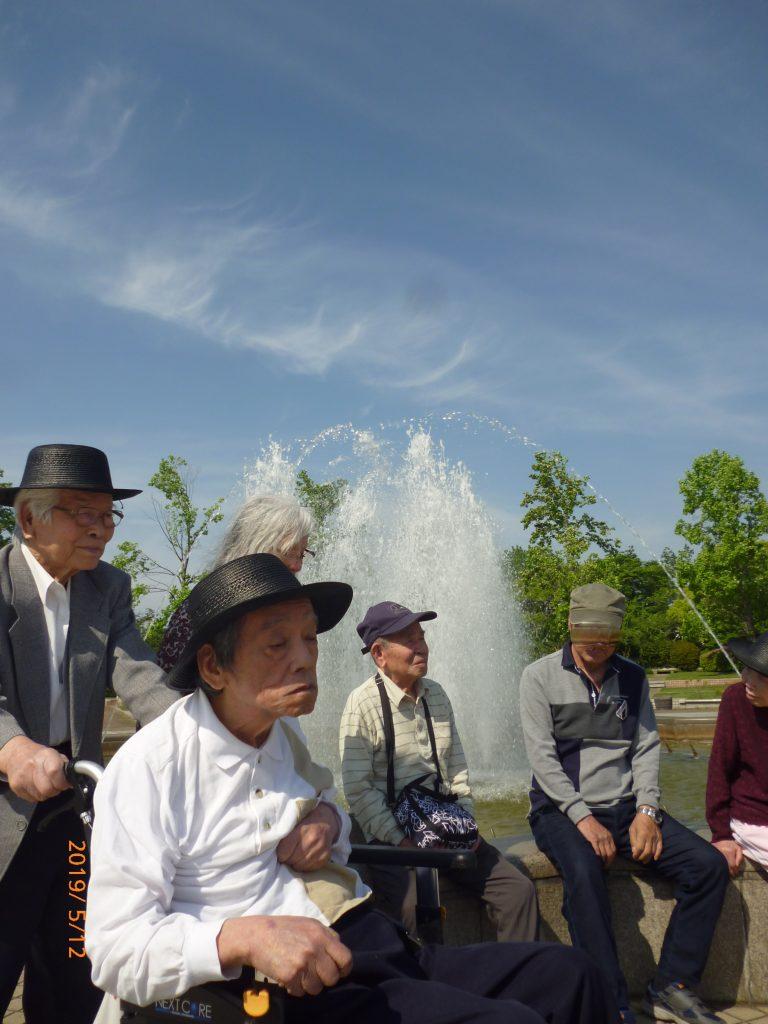 ☆ 五月晴れ 初夏の陽気 公園を散歩 ☆ 令和1/6/1